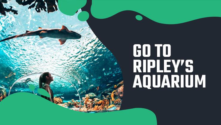 go-to-ripley's-aquarium